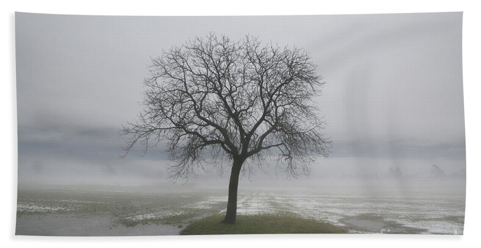 Trees Hand Towel featuring the photograph Lonely Tree by Mats Silvan