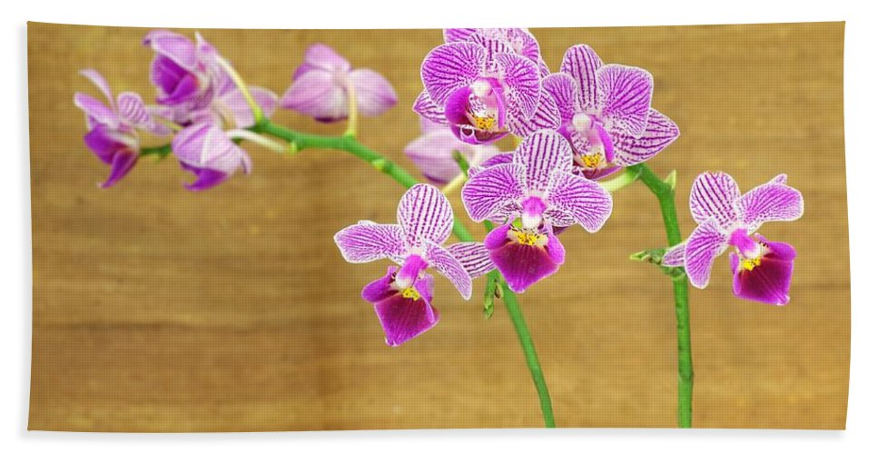 Orchid Bath Sheet featuring the photograph Purple Orchid-12 by Rudy Umans