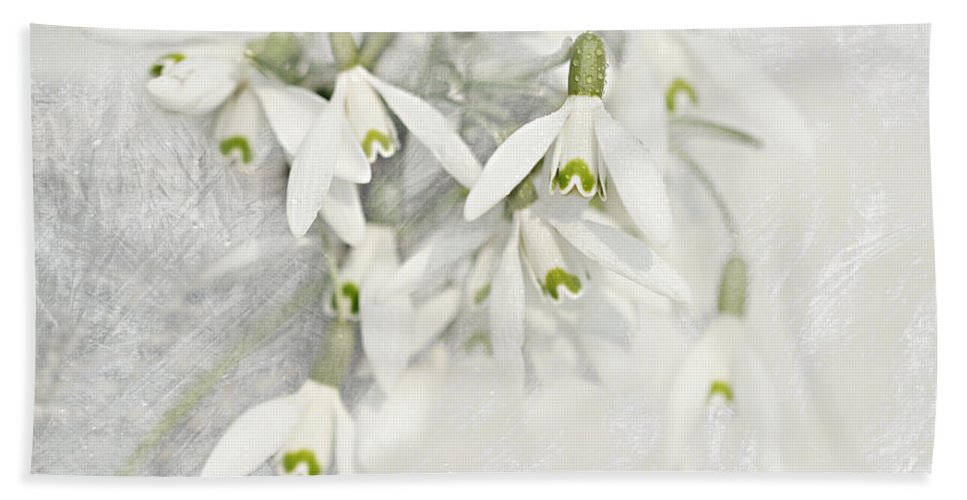 Decoration Hand Towel featuring the mixed media Snowdrops by Heike Hultsch
