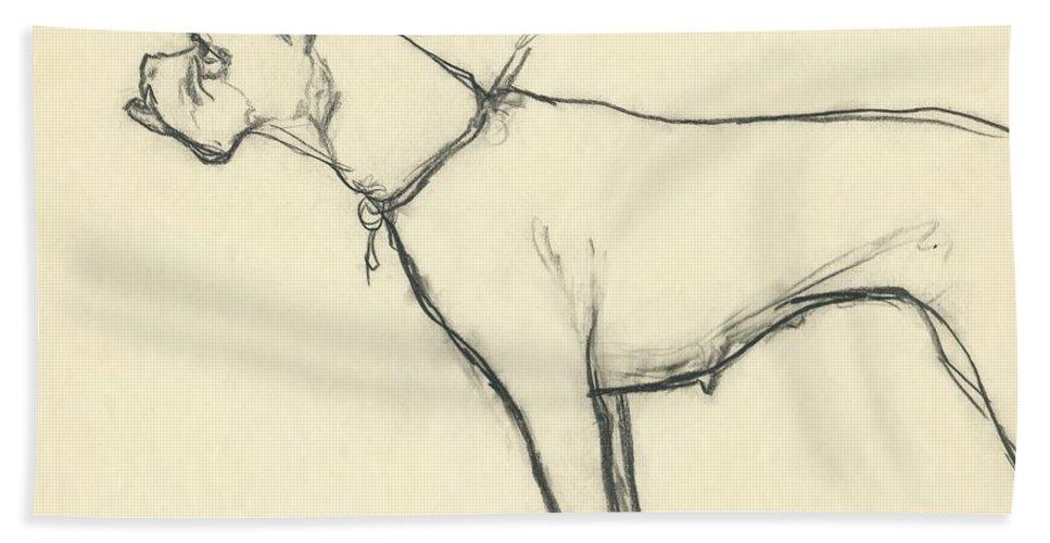 Animal Bath Towel featuring the digital art A Boxer Dog by Carl Oscar August Erickson