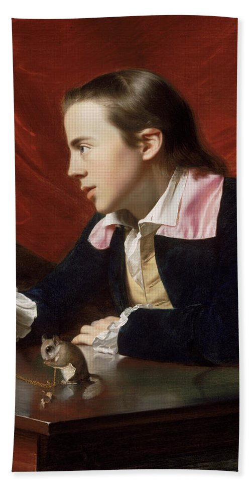 John Singleton Copley Hand Towel featuring the painting A Boy With A Flying Squirrel. Henry Pelham by John Singleton Copley