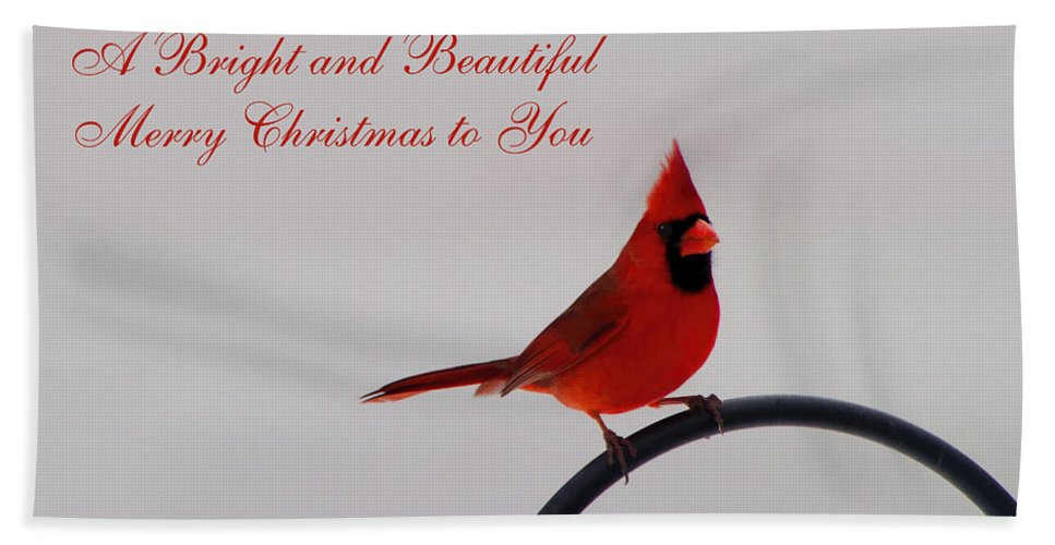 Merry Christmas Hand Towel featuring the photograph A Bright And Beautiful Merry Christmas To You by Kathy Clark