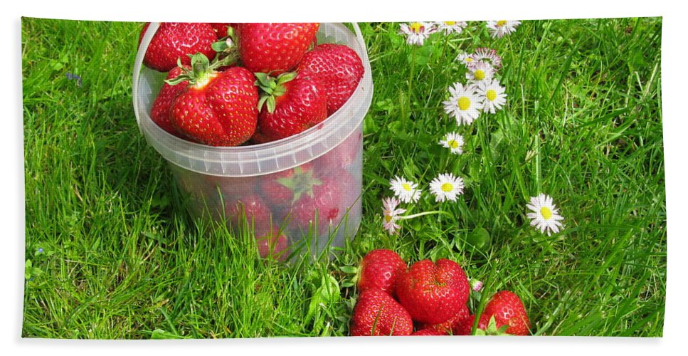 Strawberries Bath Sheet featuring the photograph A Bucket Of Strawberries by Ausra Huntington nee Paulauskaite