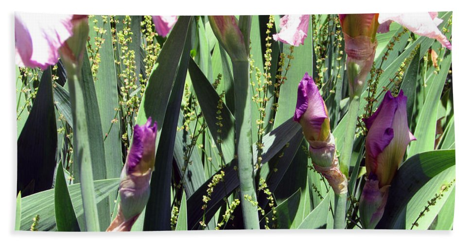 Pink Hand Towel featuring the photograph A Bushel Of Pink by Debi Singer