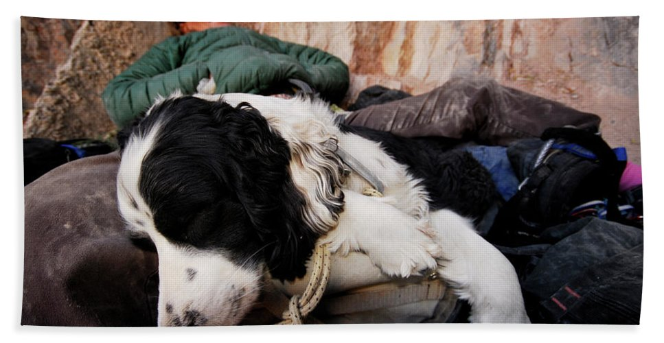 Adult Bath Sheet featuring the photograph A Climber And Her Dog Lay by Rich Wheater