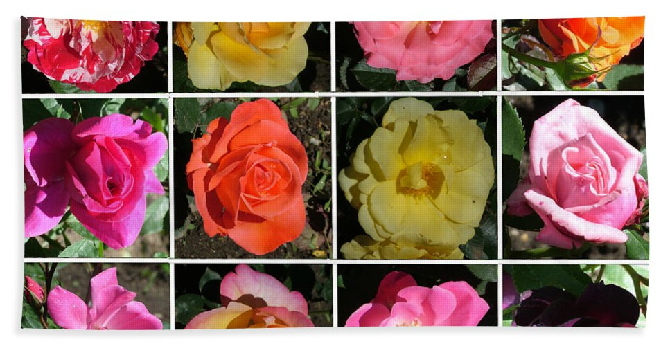 Roses Bath Sheet featuring the photograph A Dozen Roses by Geoffrey McLean