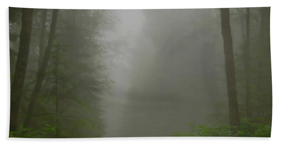 Oregon Coast Hand Towel featuring the photograph A Few Steps Into The Mist by Don Schwartz