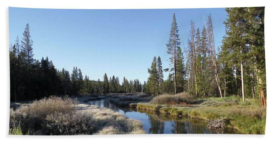 Blue Bath Towel featuring the photograph A Frosty Morning Along Obsidian Creek by Frank Madia