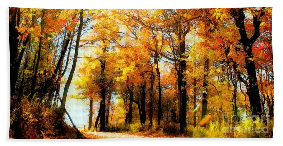 Autumn Leaves Bath Towel featuring the photograph A Golden Day by Lois Bryan