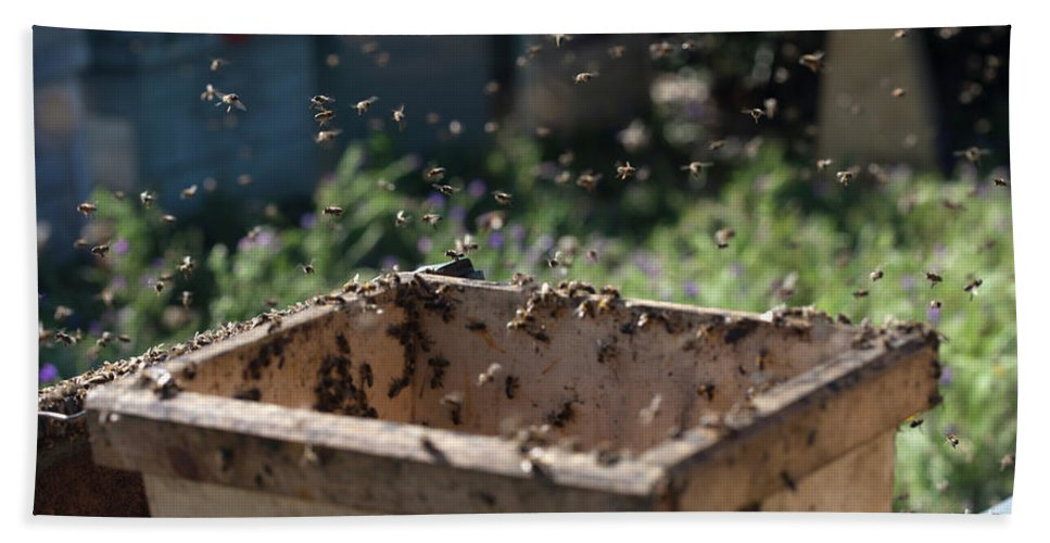 Worker Bee Bath Towel featuring the photograph A Honey Bee Swarm In The Apiary by Chico Sanchez
