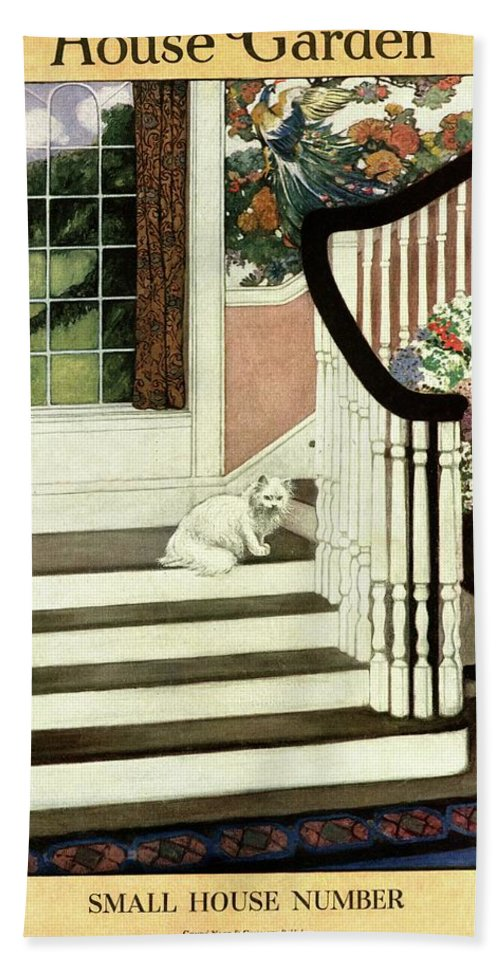 Animal Bath Towel featuring the photograph A House And Garden Cover Of A Cat On A Staircase by Ethel Franklin Betts Baines