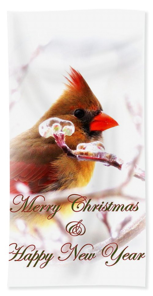 Christmas Hand Towel featuring the photograph A Lady For Christmas - Cardinal Card by Travis Truelove