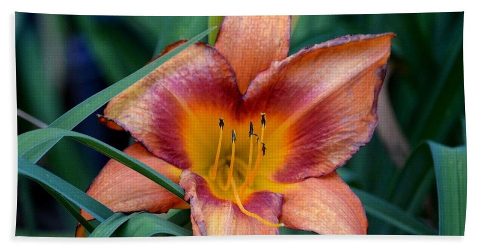A Lily's Golden Heart Hand Towel featuring the photograph A Lily's Golden Heart by Maria Urso