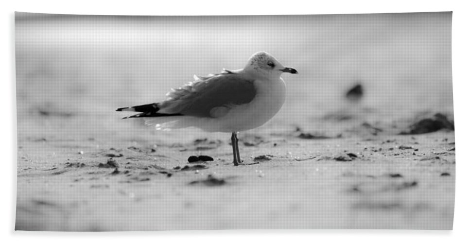Beach Cottage Life Hand Towel featuring the photograph A Little Ruffled by Mary Hahn Ward