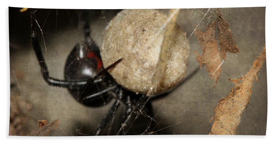 Black Widow Hand Towel featuring the photograph A Mothers Den by Melanie Lankford Photography