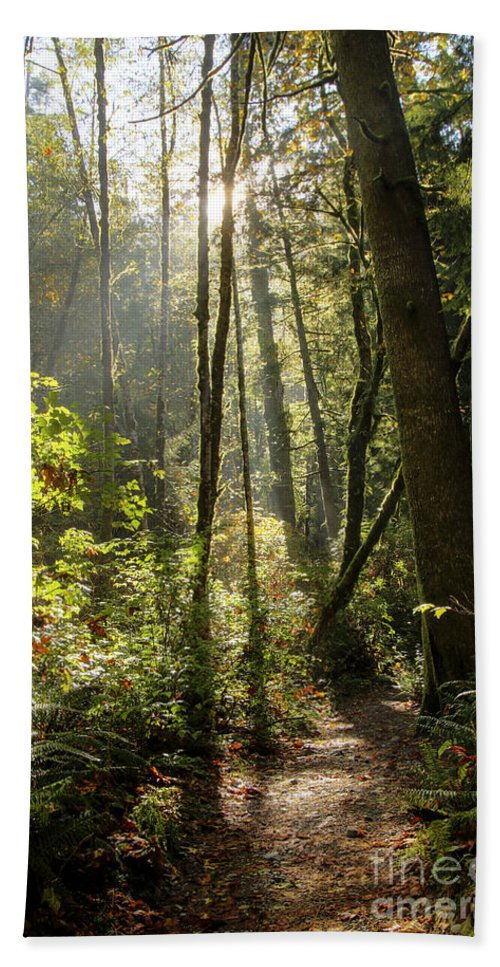Landscape Bath Sheet featuring the photograph A Narrow Trail by Darleen Stry