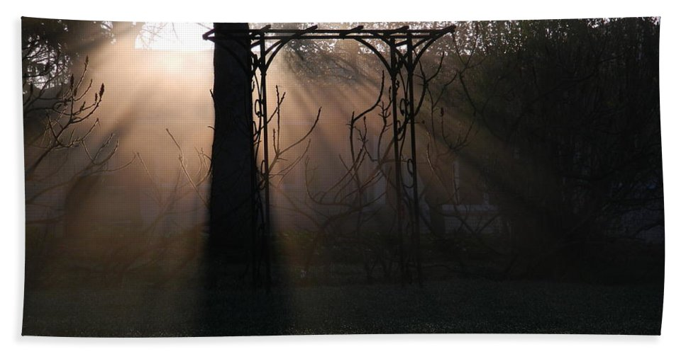 Sun Rays Bath Sheet featuring the photograph A New Day by Terri Waselchuk