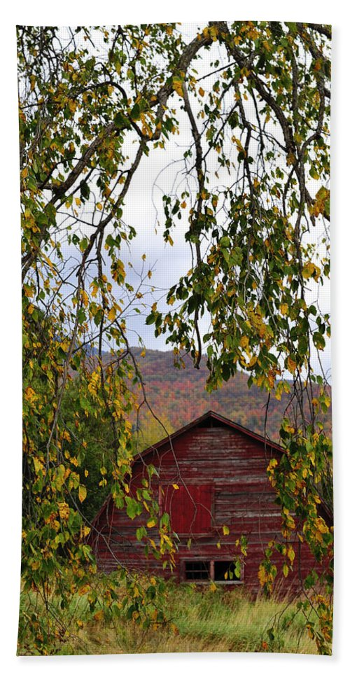 Red Barn Bath Sheet featuring the photograph A Peak Of Fall Red Barn by Terry DeLuco