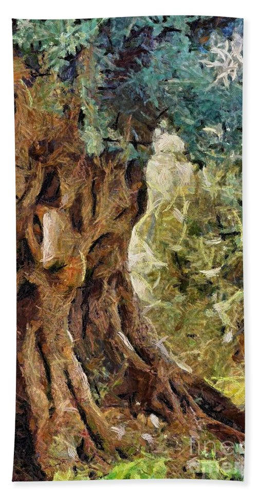 Olive Tree Bath Sheet featuring the painting A Really Old Olive Tree by Dragica Micki Fortuna