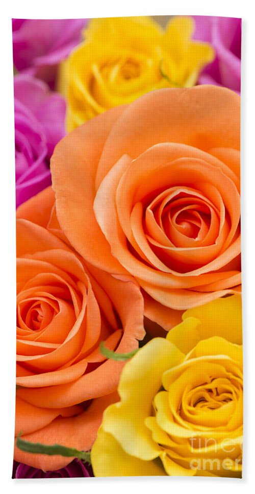 Arranged Hand Towel featuring the photograph A Riot Of Roses by Anne Gilbert