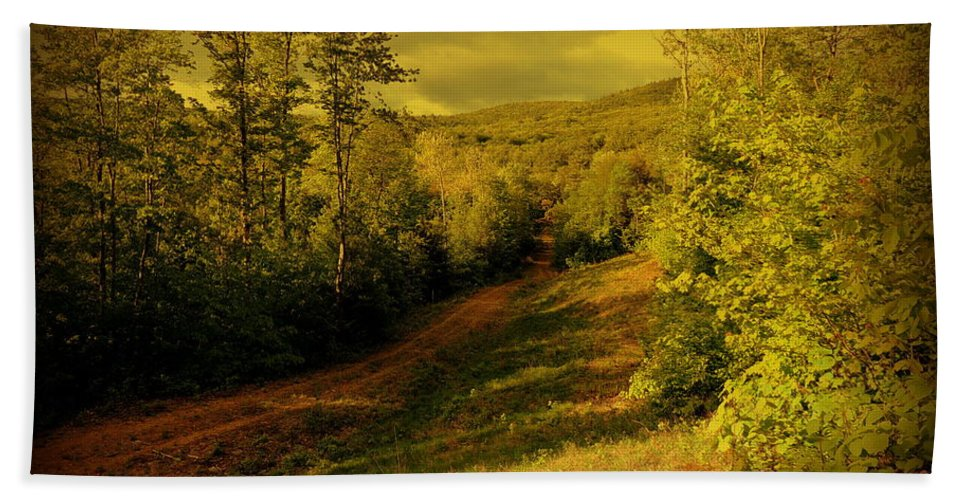Woods Hand Towel featuring the photograph A Road Less Traveled by Mim White