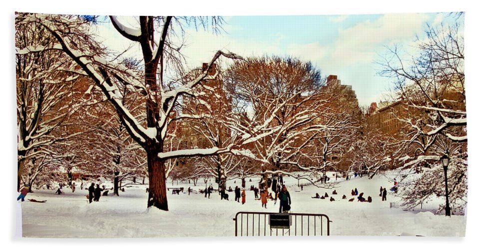 Owboards Bath Sheet featuring the photograph A Snow Day In Central Park by Madeline Ellis