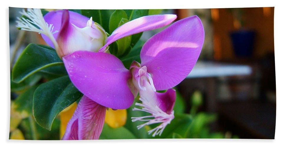 Flower Greek Cyclades Santorini Romantic Purple Hand Towel featuring the photograph A Splash Of Fuchsia by Brenda Salamone