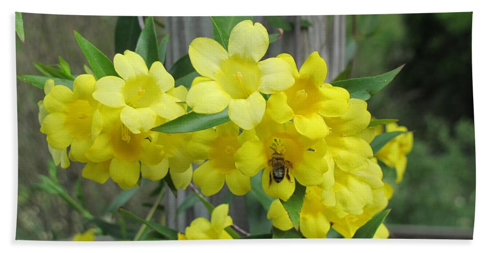 Bee Bath Sheet featuring the photograph A Taste Of Yellow by Arlene Carmel