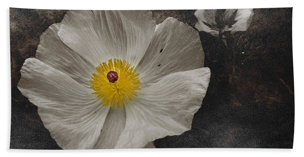 Sepia Hand Towel featuring the photograph A Touch Of Color - Poppy by Shannon Story