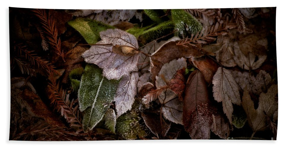 Botanical Hand Towel featuring the photograph A Touch Of Frost by Venetta Archer