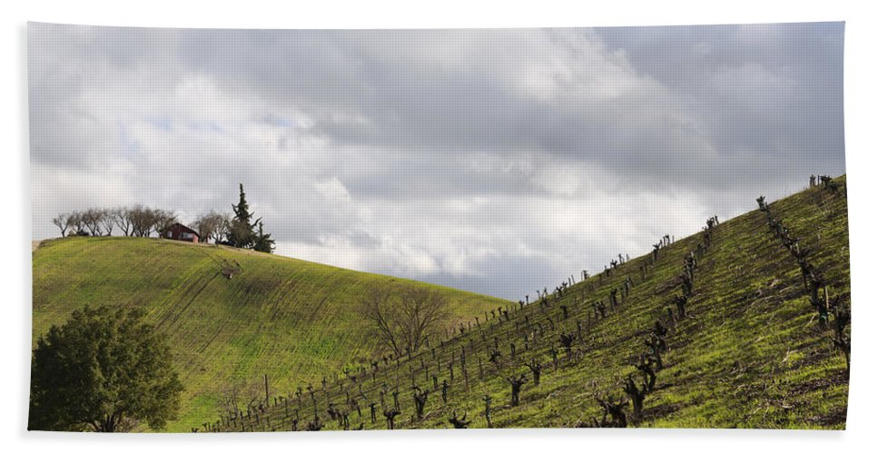 Vineyards Bath Sheet featuring the photograph A View From Nadeau by Mike Herdering
