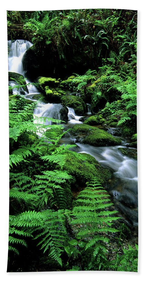Beauty Bath Sheet featuring the photograph A Waterfall In Redwood National Park by Bennett Barthelemy
