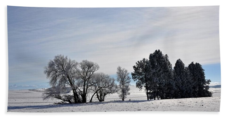 Idaho Hand Towel featuring the photograph A Wintery Day by Image Takers Photography LLC