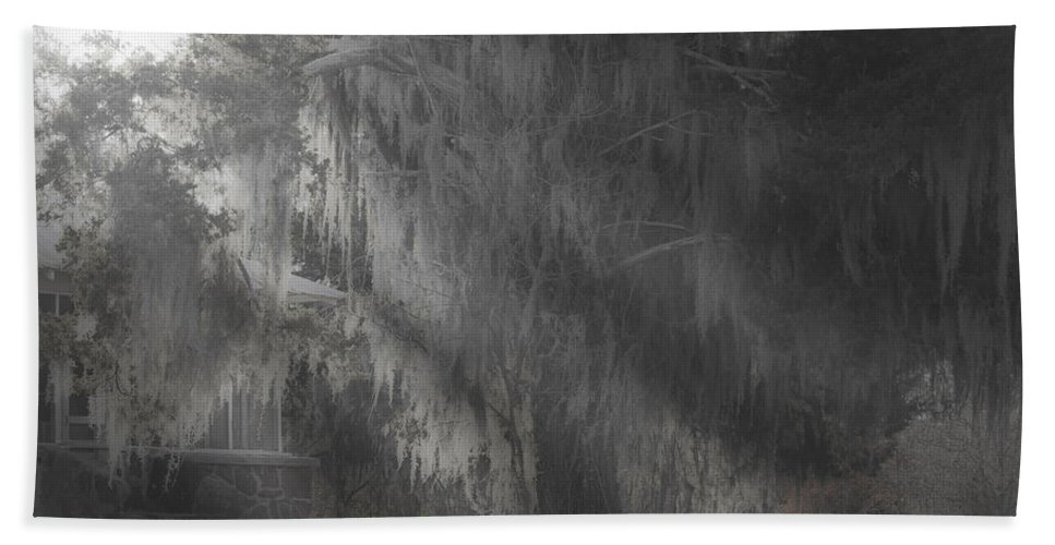 Moss Covered Trees Hand Towel featuring the photograph Abandoned by Kim Henderson