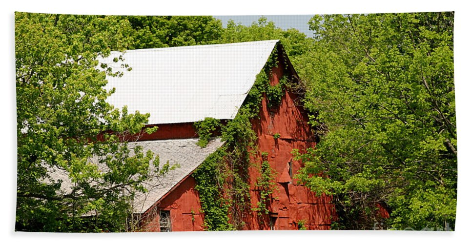 Barn Hand Towel featuring the photograph Abandoned Old Barn by Living Color Photography Lorraine Lynch