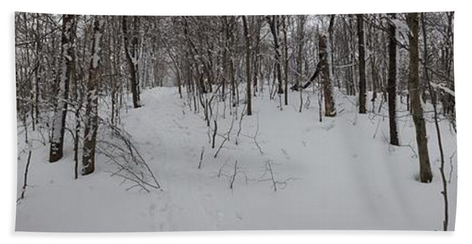 Series Bath Sheet featuring the photograph Adirondack Woods 3 by Michael French