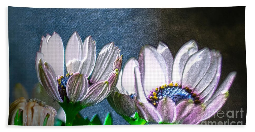 Flower Bath Sheet featuring the photograph African Daisy Detail by Donna Brown