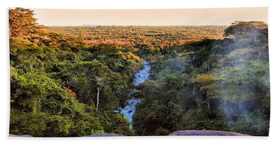 Savannah Hand Towel featuring the photograph African Forest by Martin Michael Pflaum