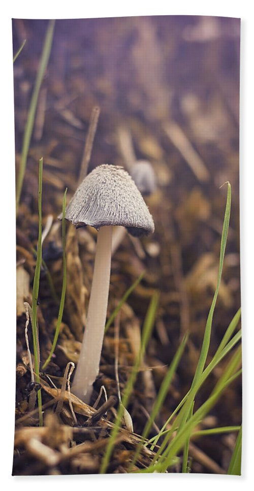 Mushroom Bath Sheet featuring the photograph After The Rain by Heather Applegate