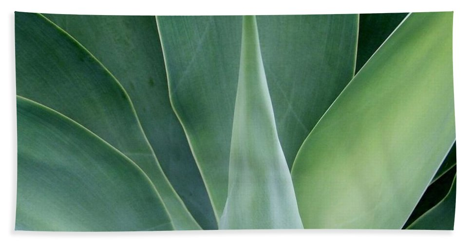 Agave Hand Towel featuring the photograph Agave No 1 by Mary Deal