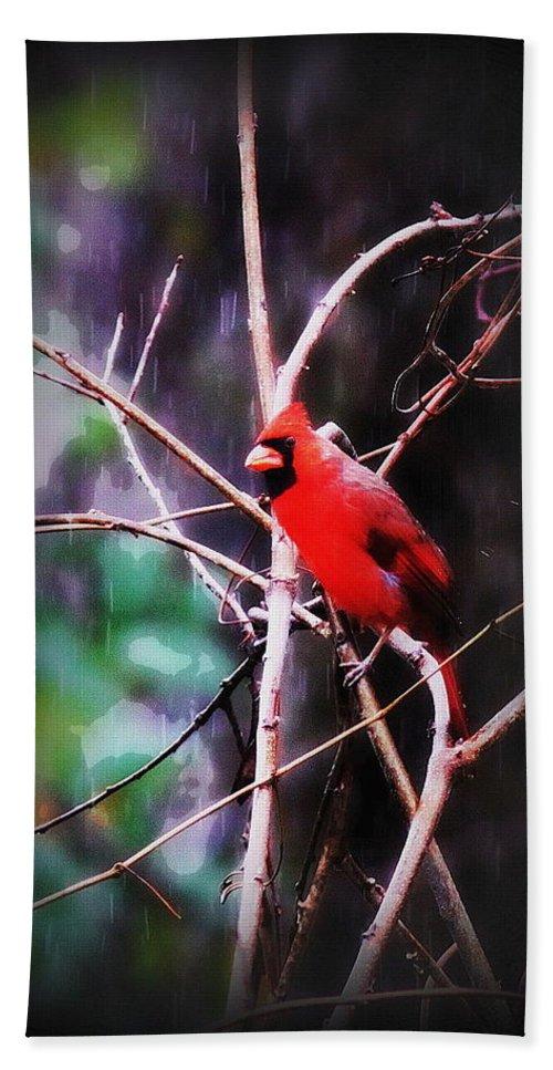 Bird Bath Sheet featuring the photograph Alabama Rain - Cardinal by Travis Truelove