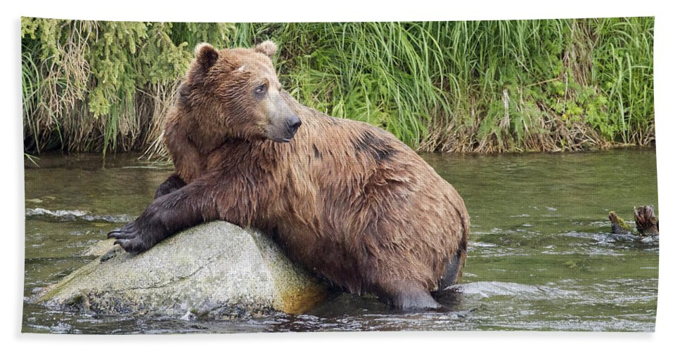 Alaska Hand Towel featuring the photograph Alaskan Grizzly by Dee Carpenter