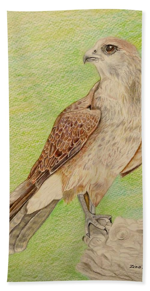 Hawk Hand Towel featuring the drawing Alert For Prey by Zina Stromberg