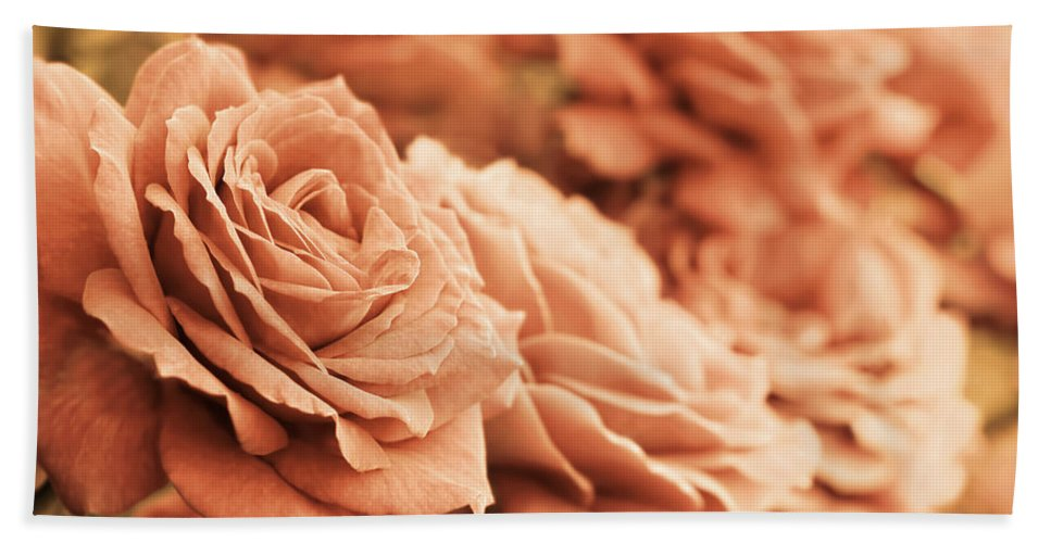 Rose Hand Towel featuring the photograph All The Orange Roses by Jennie Marie Schell