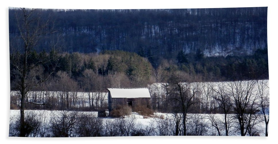 New York Hand Towel featuring the photograph Allegany Winter by Christian Mattison