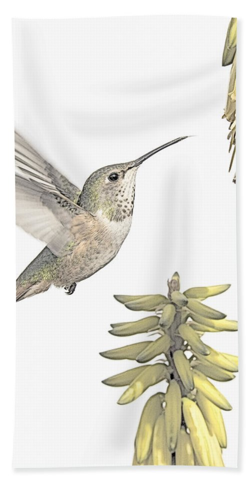 Bird Hand Towel featuring the photograph Allen's Hummingbird And Aloe by Mike Herdering
