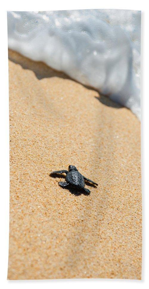 Beach Bath Sheet featuring the photograph Almost Home by Sebastian Musial