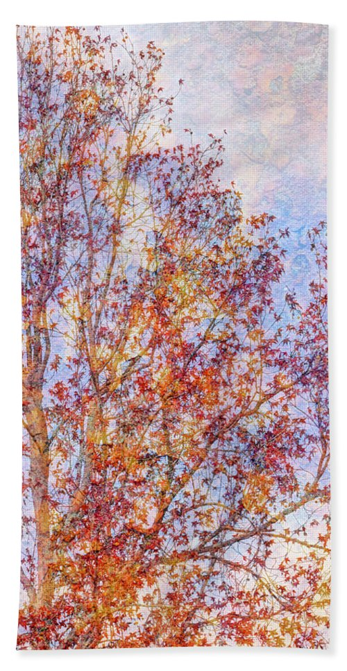 Fall Hand Towel featuring the photograph Almost Winter by Heidi Smith