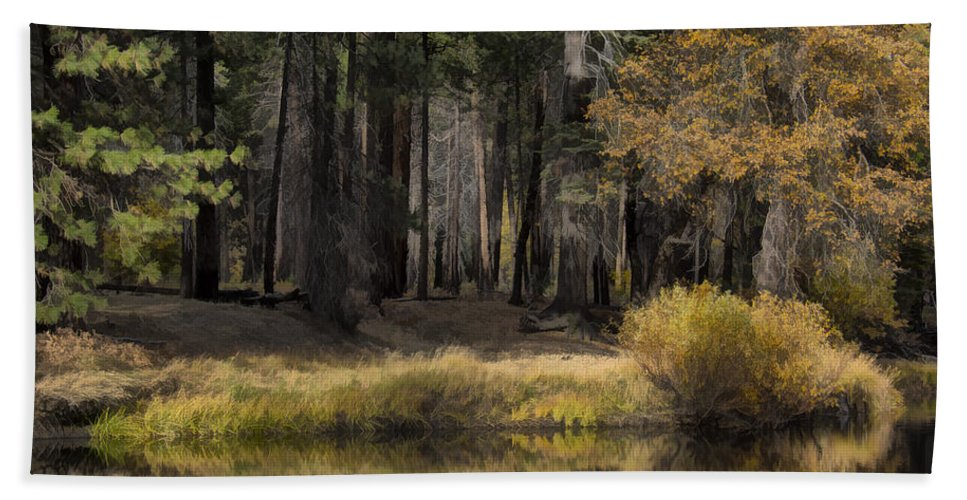 Trees Bath Sheet featuring the photograph Along The Stream by Erika Fawcett