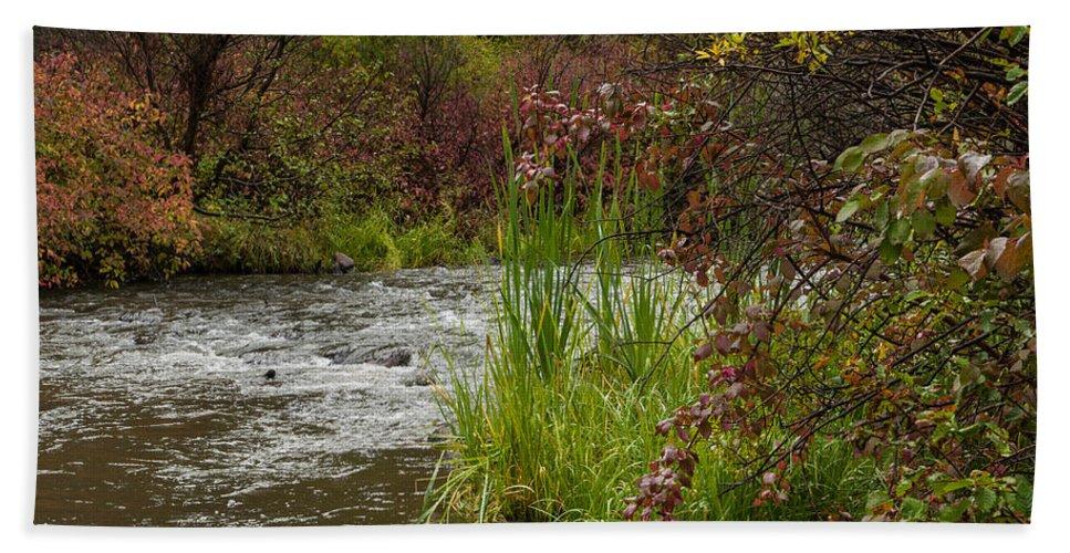 Colorado Photographs Bath Sheet featuring the photograph Along The Stream by Gary Benson